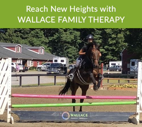 Reach New Heights: Horse jumping over high bars